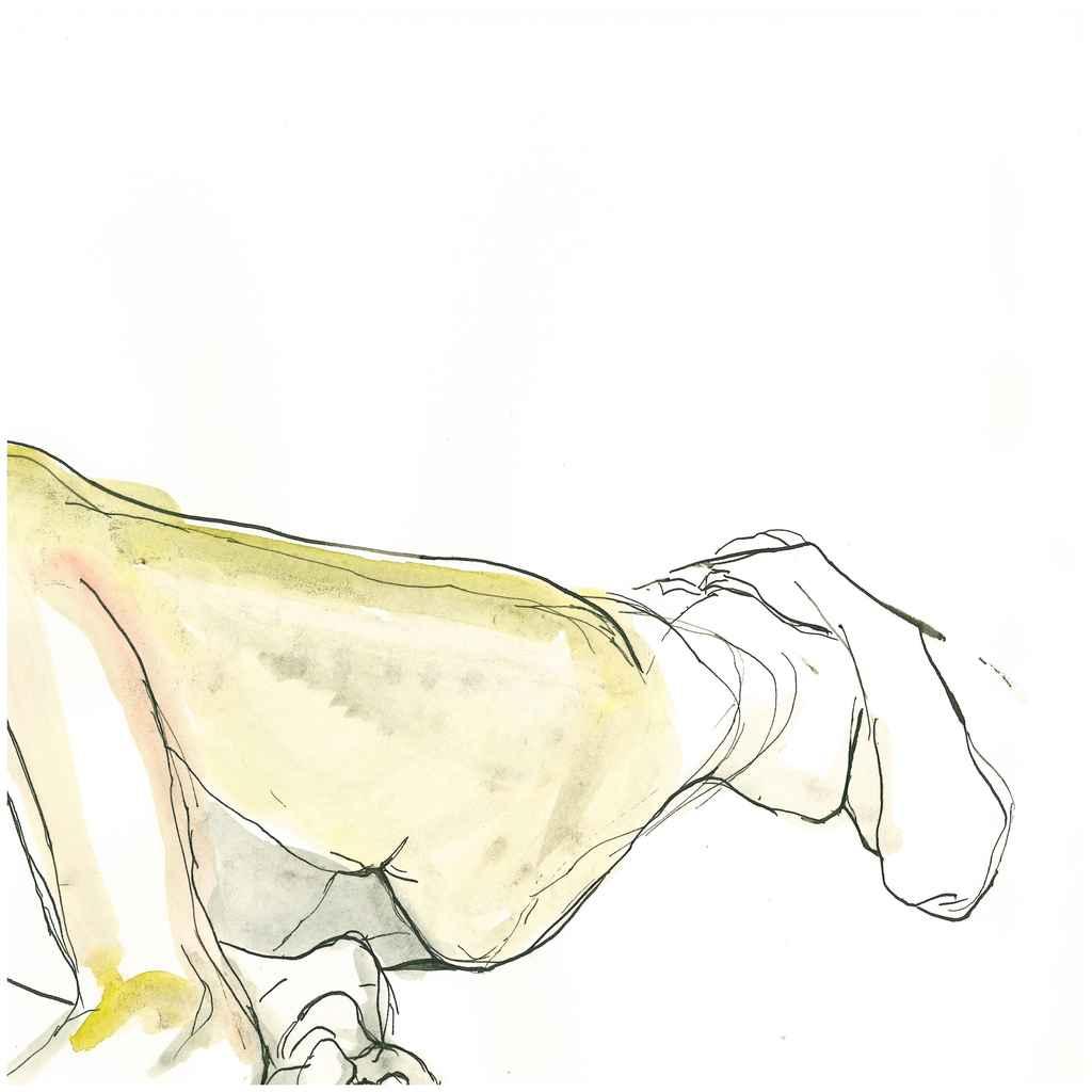 zeichnung_010